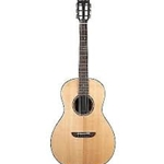 Washburn WP33SRS-L-U