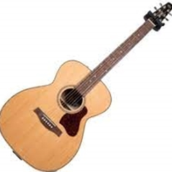 045372 Seagull Coastline Concert Hall